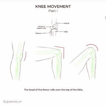 Knee movement guide Credit: SUPPORT THE ARTIST!! . . -'๑'- foll