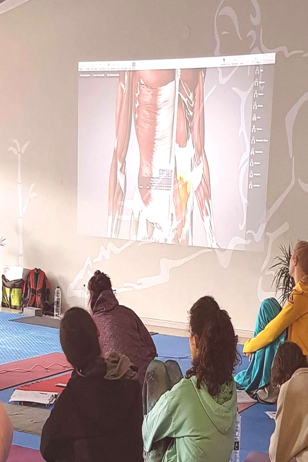A great day with Psoas and practice at Yoga TTC Cluj 200, Romania