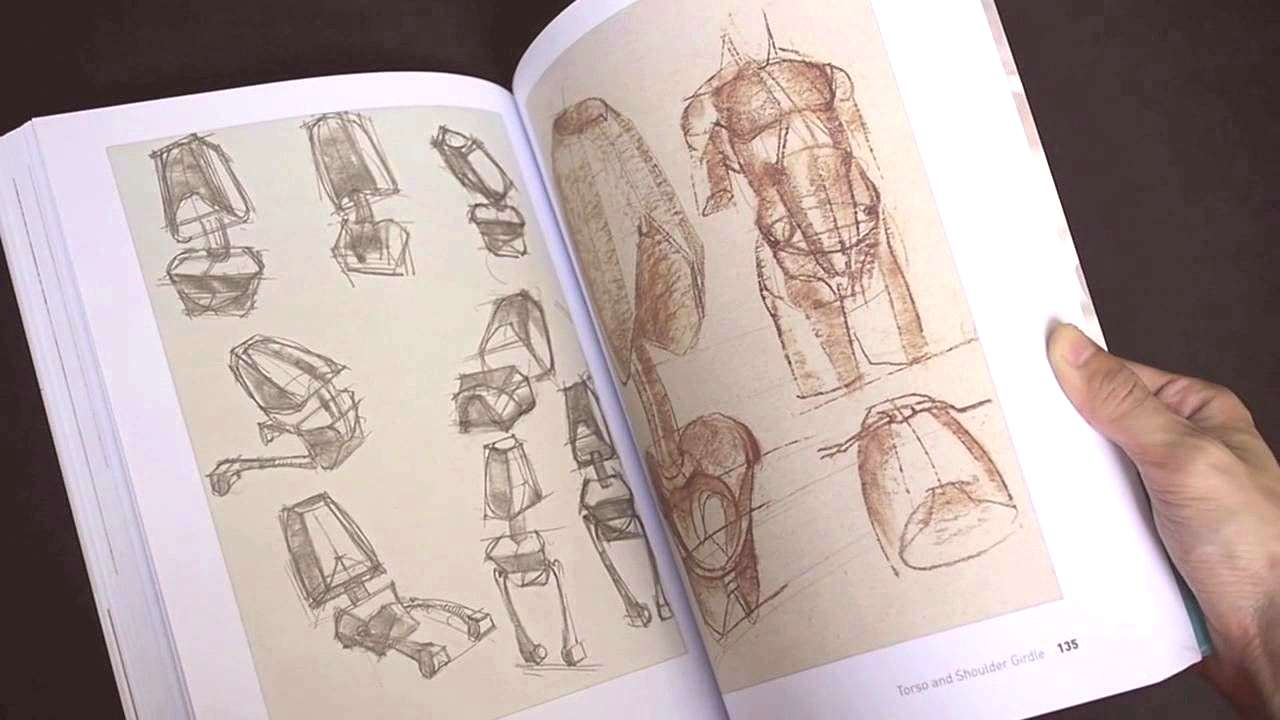 Anatomy Reference Figure Drawing Book Inspirational Plete Guide to Life Drawing ... - -