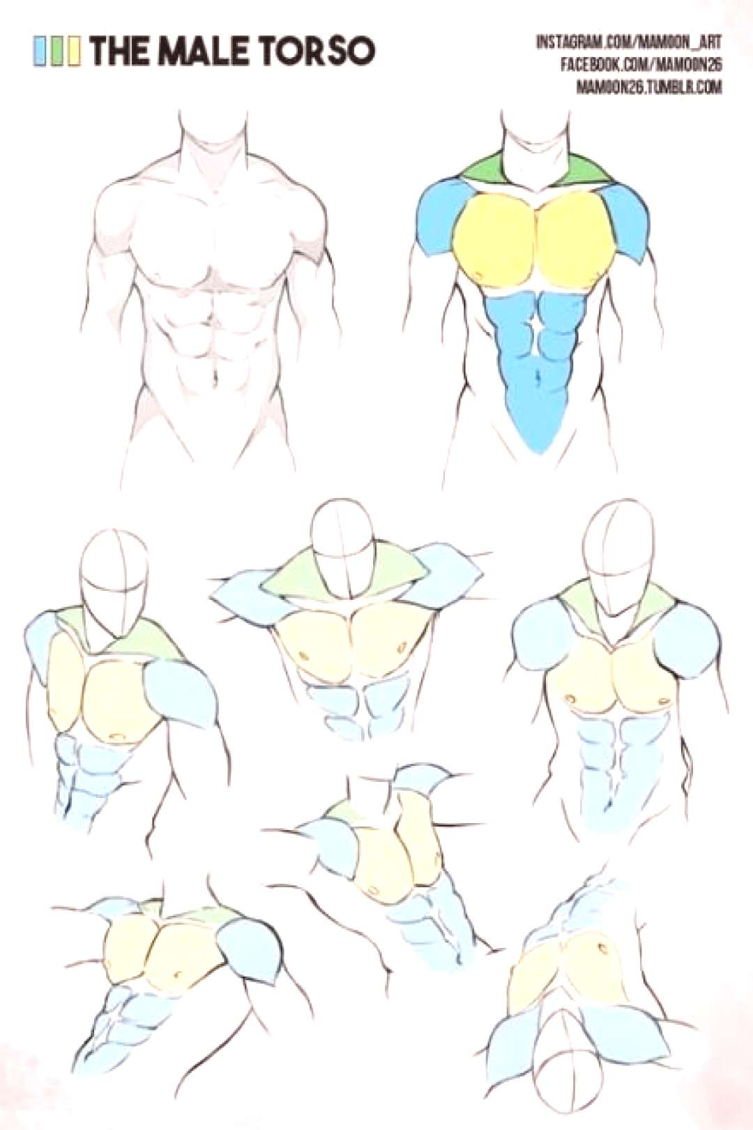 Best drawing body male muscle anatomy reference 47+ Ideas